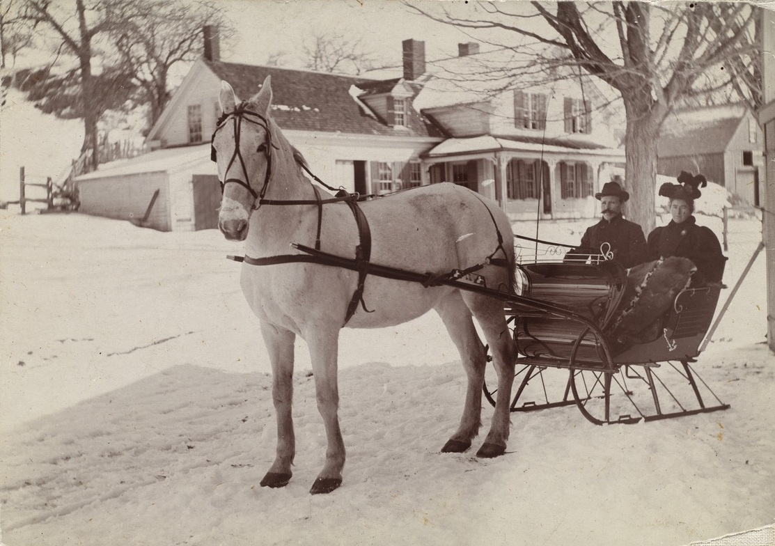 Higgins Couple in horse drawn sleigh